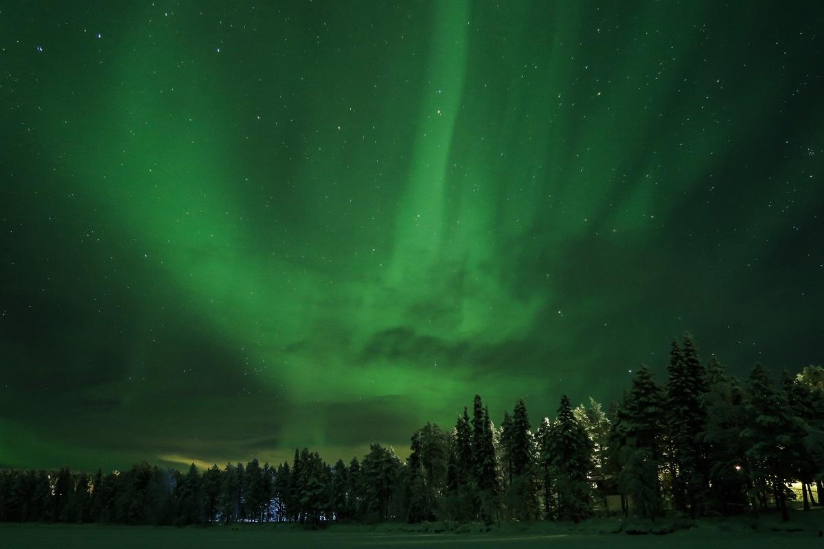 Noorderlicht bomen Lapland